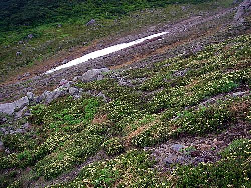 hitokoma2011-831-2.jpg