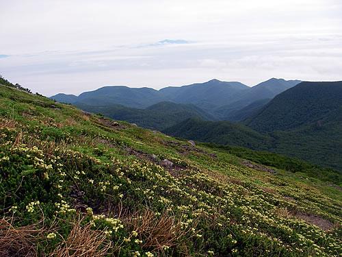 hitokoma2011-831-4.jpg