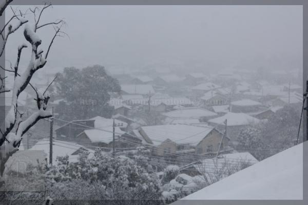 大雪 20140208
