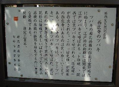 DSC00700b.jpg