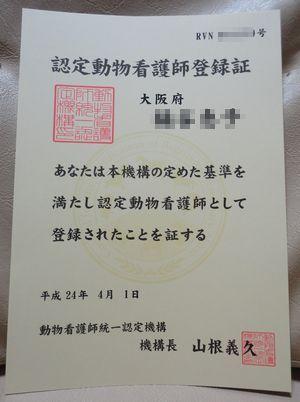DSC01925-B.jpg