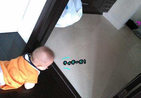 b09131216.jpg
