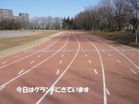20130226_1.jpg