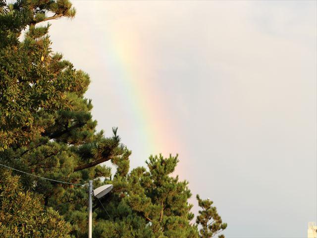 大きな虹が出たよ 行ってみたら、もう消えそう