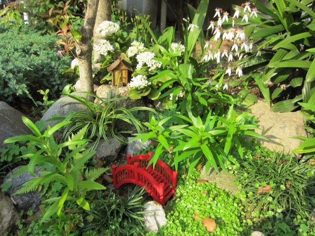 アジサイ ミニ日本庭園