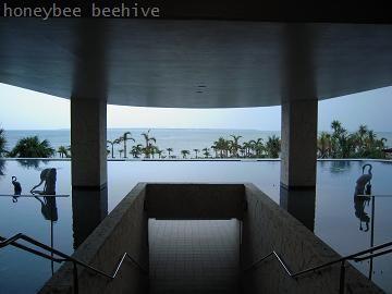honeybee beehive