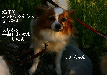 s-IMG_3652.jpg