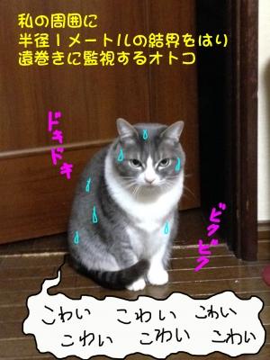 IMG_28401.jpg