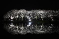 夜1_convert_20130409081710