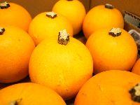 スモールオレンジ