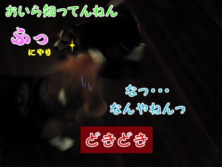 20110824_02.jpg