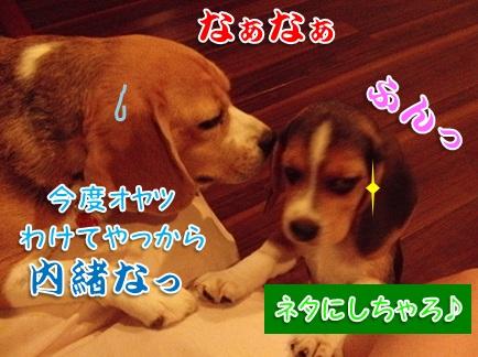 20110824_05.jpg