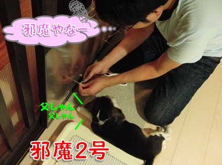 20110829_04.jpg