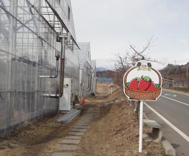 いちご農園