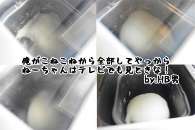 IMGP8506-3.jpg