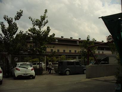 ベジタリアンソサエティ1