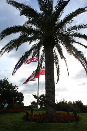 bflag.jpg