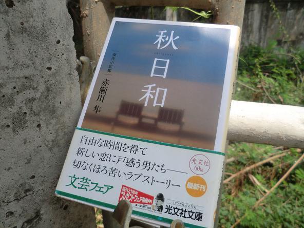 6 12.3.17本「秋日和」0 (1)