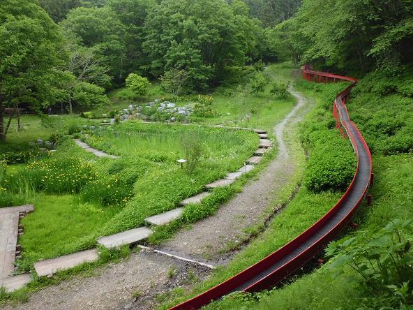 1 12.5.31丸山ハイク (4)