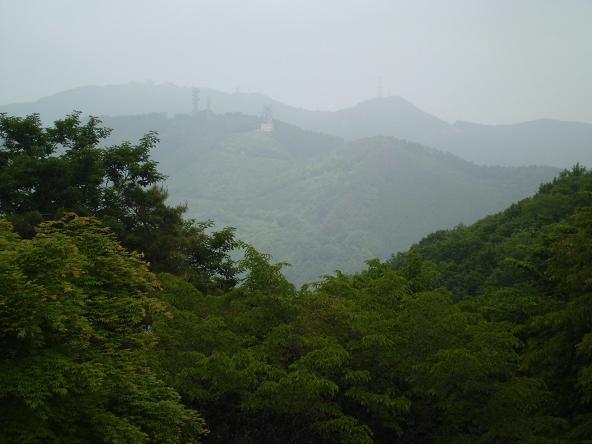 8 12.5.31丸山ハイク (47)