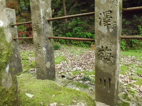 12.6.15釣り出流(栃木県) (44)