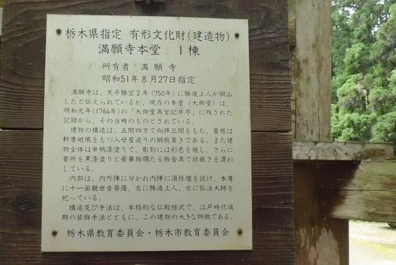 12.6.15釣り出流(栃木県) (78)