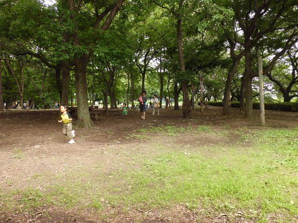 12.6.24ブログ用冒険の森3 (12)