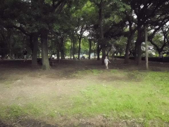 12.6.24ブログ用冒険の森3 (16)