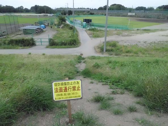 1 12.7.20ブログ用学研・ギネスほか (4)