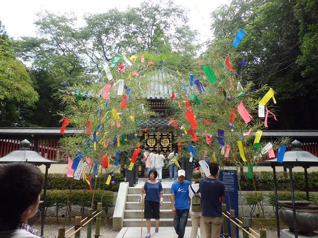 12.8.3-5作並温泉・松島 (156)
