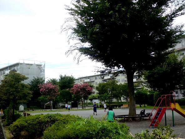 12.8.14青葉団地の風景 (8)