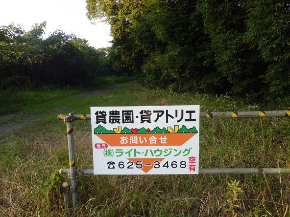 3 12.8.25朝ウオーク風景ほかブログ用 (17)