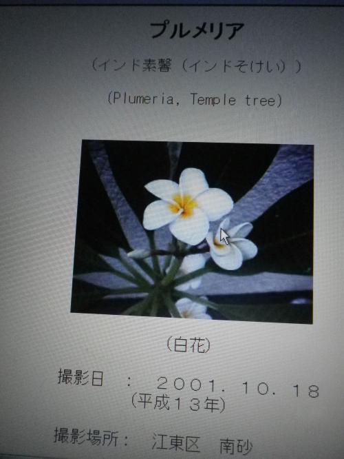 IMGP6407_convert_20120627165639.jpg