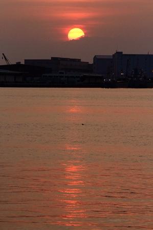2011-10-08 華1194