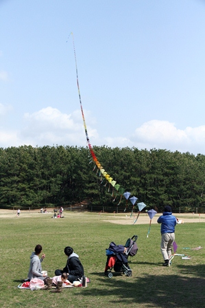 2011-10-08 華1217