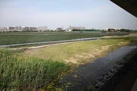 2011-10-08 華1562