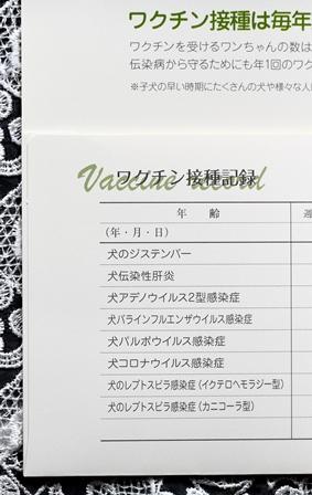 2011-10-08 華1824