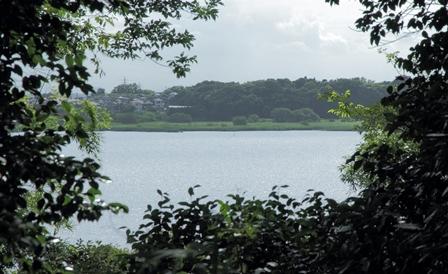 2011-10-08 華1900