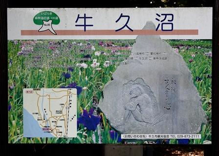 2011-10-08 華1891