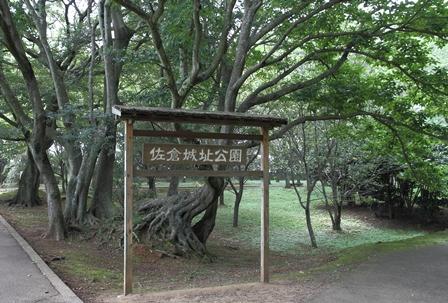 2011-10-08 華1916