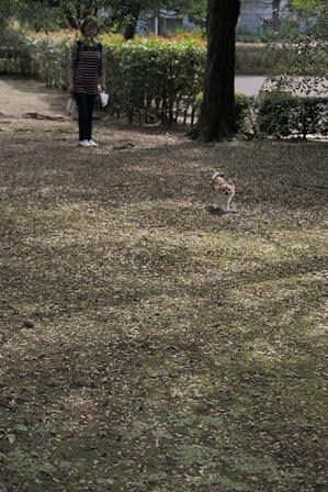 2011-10-08 華2108