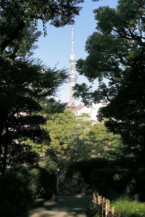 2011-10-08 華2405