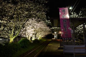 浦ノ崎駅の桜2013(5)