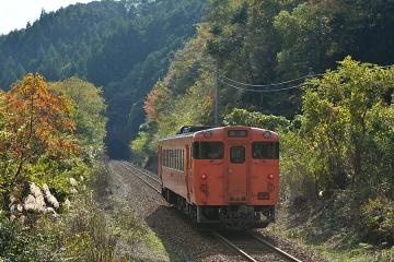 田代直線(2)