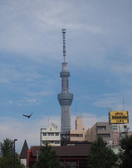 アイドール・浅草寺8