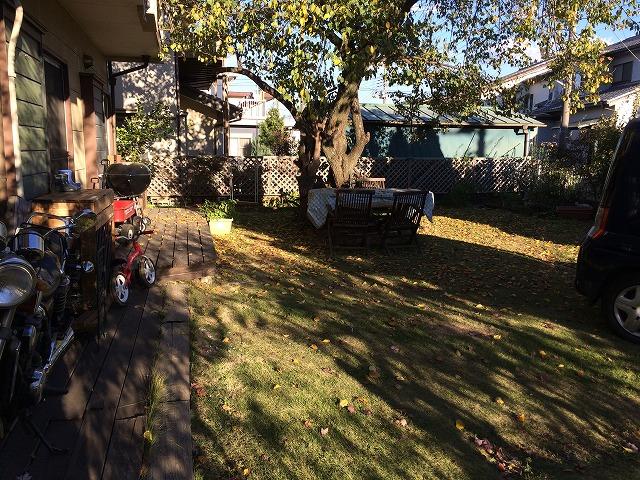写真 2014-11-13 15 05 39