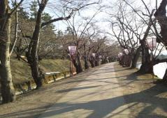 弘前公園 (7)_500