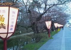 弘前公園4.2540_500