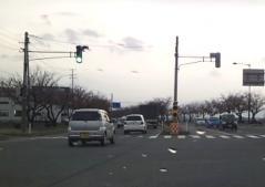 桜4.26_500