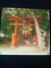 傍島 (19)_500